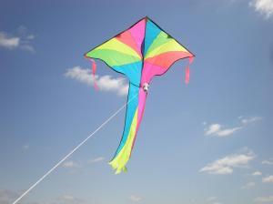 kite_soaring
