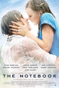 200406-the-notebook